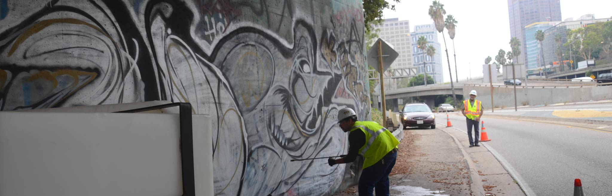 Mural Rescue Program    click for more details >