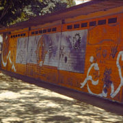 038_el Arbol Del Medio1