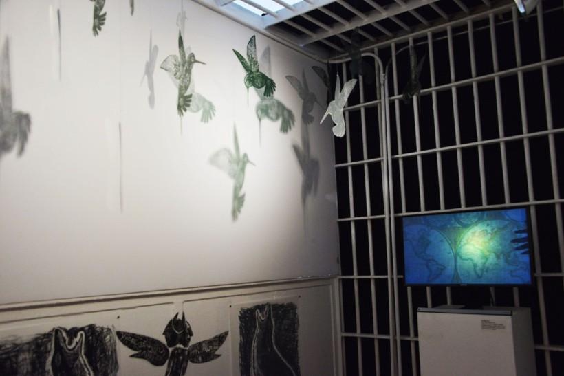 "Hummingbirds and video installation in Poli Marichal's ""Sin Fronteras""."